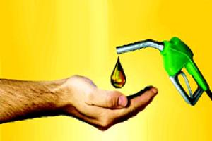 conservation of petroleum essay The petroleum conservation research association (pcra) is an organization established in india in 1978, under the aegis of the indian ministry of petroleum and.